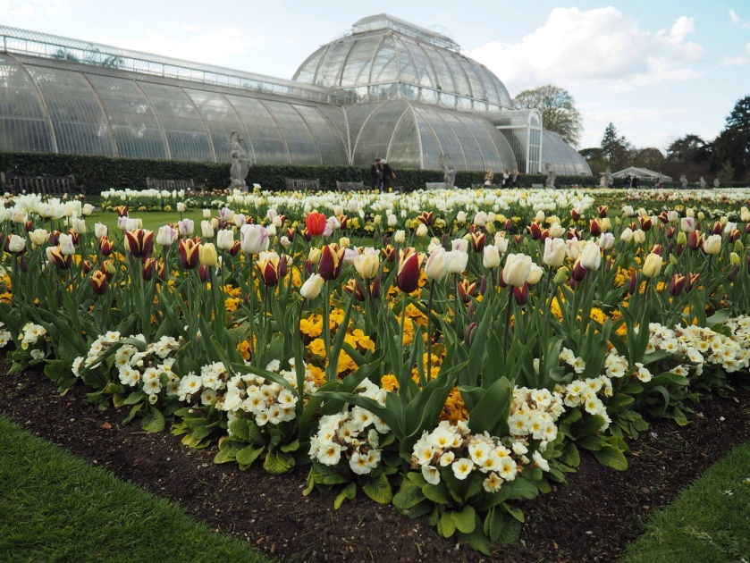 Kew Gardens Palm House - A Perfect Day in Kew by A Ranson Note http://nicolaranson.com