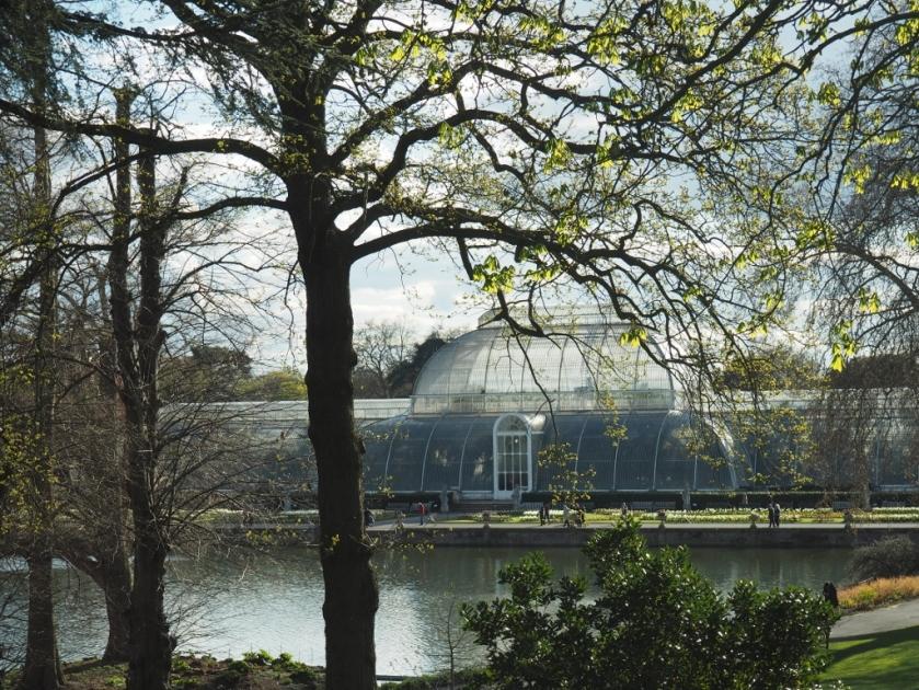 Kew Gardens Palm House.jpg