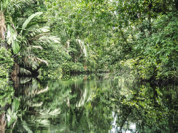 On the canals in Tortuguero National Park, Costa Rica via A Ranson Note