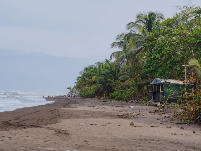 Tortuguero beach, Laguna Lodge, Costa Rica via A Ranson Note