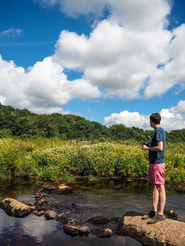 The river at Postbridge, Dartmoor National Park, Devon